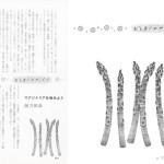 ■文藝春秋 ― オール讀物 『おしまいのページで』  挿絵連載・2016年3月号
