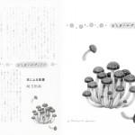 ■文藝春秋 ― オール讀物 『おしまいのページで』  挿絵連載・2016年9月号
